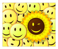 Smiling background with sunflower Royalty Free Stock Photos
