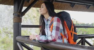 Smiling backpacker on a mountain lookout stock footage