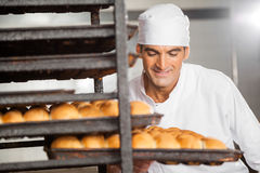 Smiling Baker Removing Baking Tray From Rack stock image