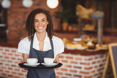 Smiling barista holding a tray of coffee cups Royalty Free Stock Photo