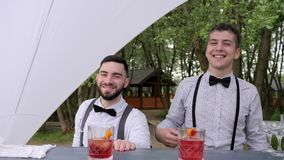 Smiling bartenders behind bar, barman making cool drink in glass, bartender decorate cocktails stock footage