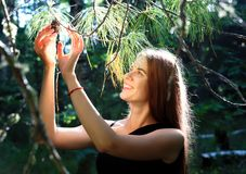 Smiling girl rips a lump from a cedar branch in the summer Siberian taiga royalty free stock photos