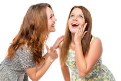 Smiling beautiful girlfriends gossiping Royalty Free Stock Images