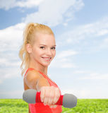 Smiling beautiful sporty woman with dumbbell Royalty Free Stock Photography
