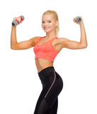 Smiling beautiful sporty woman with dumbbells Royalty Free Stock Images