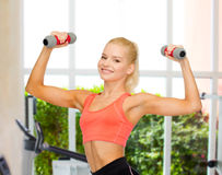 Smiling beautiful sporty woman with dumbbells Royalty Free Stock Photo