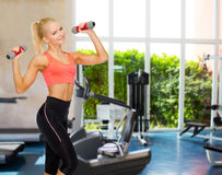 Smiling beautiful sporty woman with dumbbells Royalty Free Stock Image