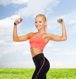 Smiling beautiful sporty woman with dumbbells Royalty Free Stock Photos