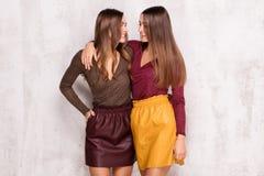 Smiling beautiful twins, autumn style. Stock Photos
