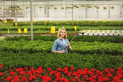 Smiling beautiful young woman standing in orangery and watering plants stock photos