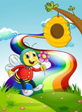 A smiling bee holding a flower at the hilltop with a rainbow Stock Photography