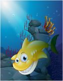 A smiling big shark under the sea Stock Image