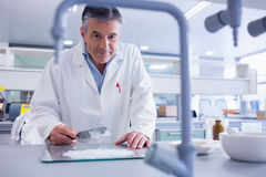 Smiling biochemist preparing some medicine. In laboratory royalty free stock photo