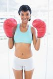 Smiling black haired woman wearing boxing gloves Royalty Free Stock Photography