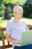 Smiling blonde using laptop in a park. On a sunny day stock photos