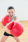 Smiling boxer practicing in fitness studio Stock Photos
