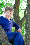 Smiling boy. Sitting on the tree Stock Images