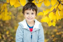 Smiling boy in autumn Leafs. Autumn activities for children. laughing Little child in autumn park. Beautiful happy portrait young nature season caucasian royalty free stock photography