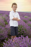 Smiling boy in avender field sunset Royalty Free Stock Photos