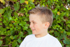 Smiling boy with blue eyes about 5 years Royalty Free Stock Photography