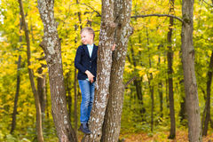 Smiling boy climbed in a tree in park Royalty Free Stock Photos