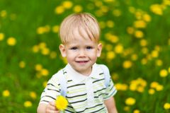 Smiling boy in dandelion meadow Royalty Free Stock Photo