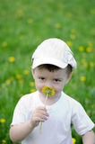Smiling boy in dandelion meadow. Smiling pretty boy in dandelion meadow carrying flower Stock Photo