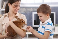 Smiling boy feeding rabbit. Smiling boy feeding cute pet rabbit handheld by happy young mother Royalty Free Stock Photography