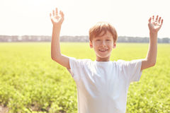 Smiling boy in the field at sunny summer morning Stock Images