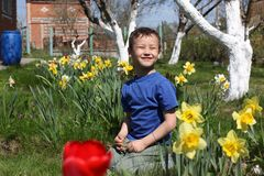 Smiling boy at flowers Royalty Free Stock Photos