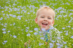 A smiling boy on green floor. A smiling boy sits on a floor from a green grass and blue colors of flax Stock Photography