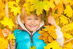 Smiling boy hiding in yellow autumn leaves Royalty Free Stock Images