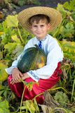 Smiling boy holding  big yellow pumpkin in hands Stock Photos