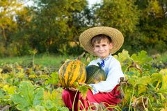 Smiling boy holding  big yellow pumpkin in hands Royalty Free Stock Photo