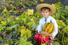 Smiling boy holding  big yellow pumpkin in hands Stock Images