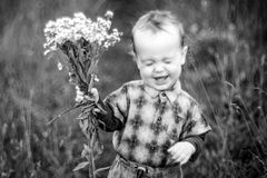 Smiling boy holding wild chamomile flowers royalty free stock photo