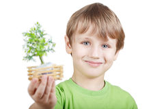 Smiling boy holds little artificial tree Royalty Free Stock Photos