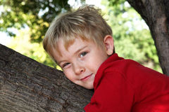Smiling boy hugging a tree Stock Photography