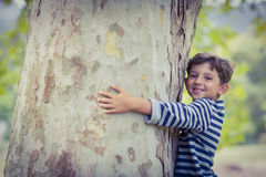 Smiling boy hugging tree trunk in park. Portrait of smiling boy hugging tree trunk in park Royalty Free Stock Images