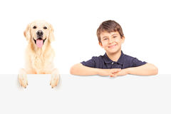 A smiling boy and Labrador retriever posing behind a panel Royalty Free Stock Images