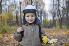 Smiling Boy With Leaves In Park Stock Photo