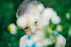 Smiling Boy looking through a bouquet of flowers royalty free stock image