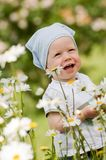 Smiling boy on the meadow Stock Image