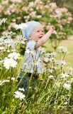 Smiling boy on the meadow Royalty Free Stock Image