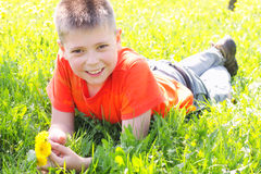 Smiling boy on meadow grass Stock Images