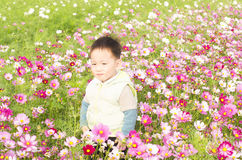 Smiling boy in meadow Stock Photo