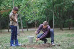 A young father and his son are planting a tree in their yard. Two boys are planting plants for Earth Day Royalty Free Stock Images
