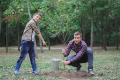A young father and his son are planting a tree in their yard. Two boys are planting plants for Earth Day Royalty Free Stock Image