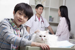 Smiling Boy with pet cat in veterinarian's office Royalty Free Stock Photo