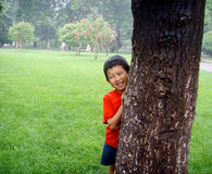 Smiling Boy in Red T-shirt Hidden from a Tree Royalty Free Stock Photo